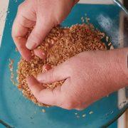como-hacer-shio-koji-receta-3