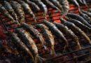 las-sardinas