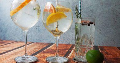 La quinina en el Gin Tonic